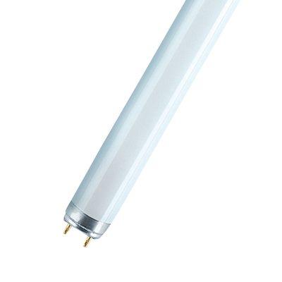 Tubo fluorescente osram natura t8 36w luce naturale for Tubos led t8 leroy merlin