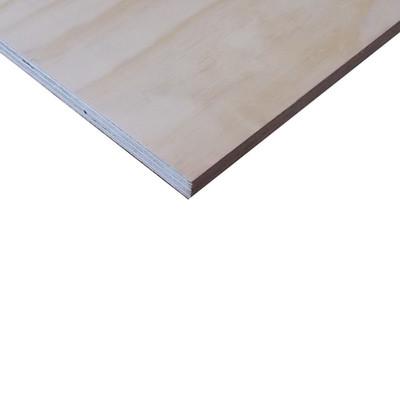 Pannello compensato multistrato pino fenolico pino 18 x for Leroy merlin compensato