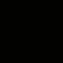 Smalto per legno Syntilor nero satinato 0.5 L