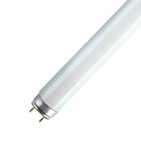 Tubo fluorescente Osram T8 36W luce naturale