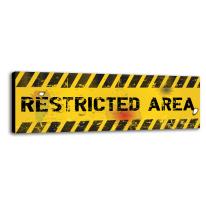quadro su tela Restricted area 20x60
