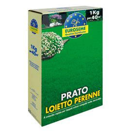 Semi prato prezzi e offerte online leroy merlin for Prato finto leroy merlin