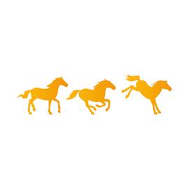 Stencil Cavalli