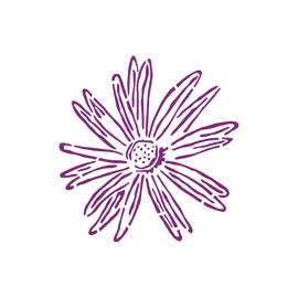 Stencil Aster