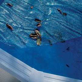 Copertura isotermica 460 x 910 cm per piscina