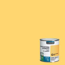 Pitture per pareti colorate | Leroy Merlin