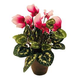 Fiore ciclamino vaso 11 cm rosa