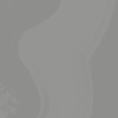Piastrella Regal H 35 x L 35 cm  normal grigio