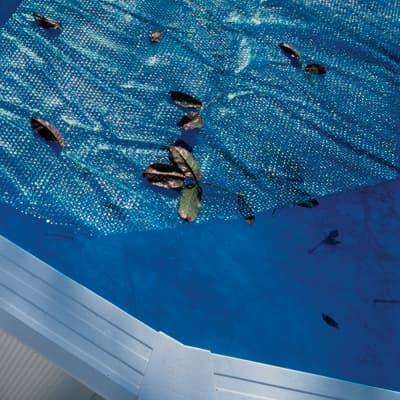 Copertura per piscina a bolle NATERIAL in polietilene 295 x 495 cm