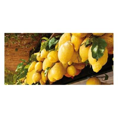 Pannello decorativo Limoni di Sorrento 210x100 cm