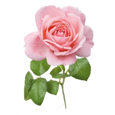 Fiore artificiale Rosa H 65 cm
