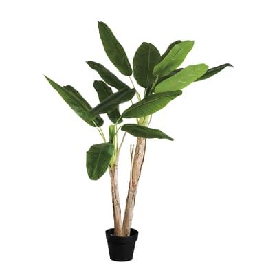 Pianta artificiale Banano in vaso H 180 cm