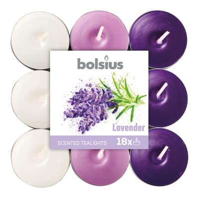 Tealight BOLSIUS essenza lavanda  Ø 19.5 cm H 3 cm, 18 pezzi