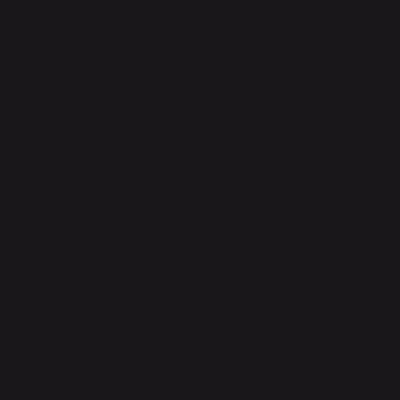 Vernice 0.59 L nero