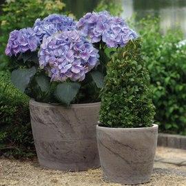 Vasi e sottovasi in terracotta prezzi e offerte online for Vasi in terracotta prezzi