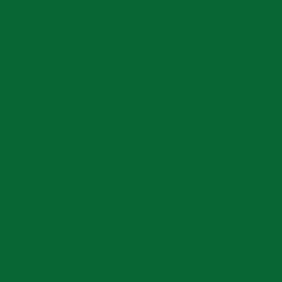 Colorante universale Luxens verde bosco 80 ml