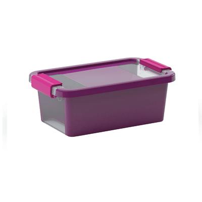 Scatola Bi Box XS L 16 x P 26,5 x H 10 cm viola